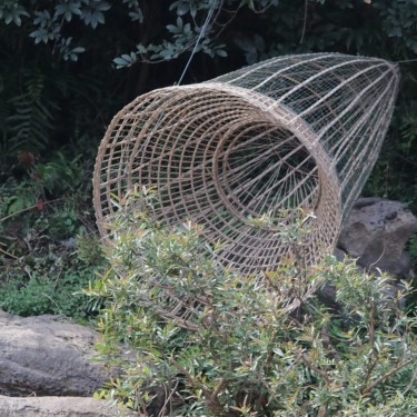 fishing trap made from reeds