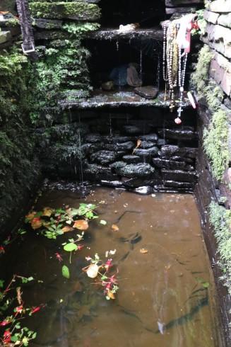 Bridget's well
